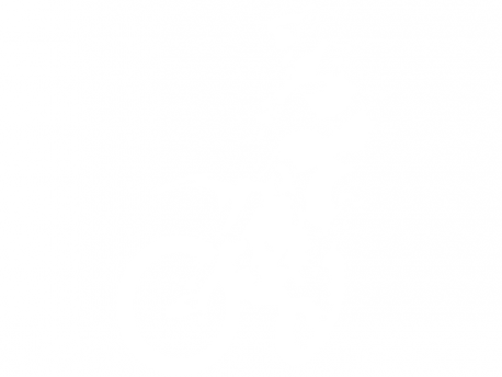Autocolante Motocross 3