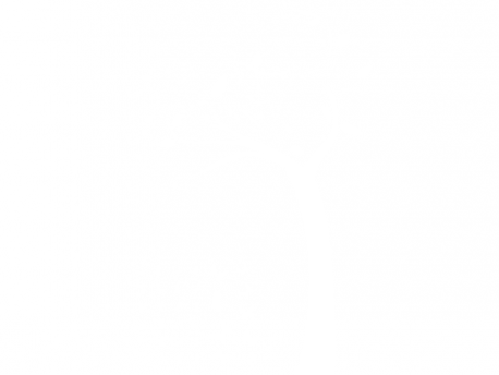 Autocolante Árvore Borboletas ao vento