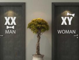 Autocolante WC Man & Women Cromossomos
