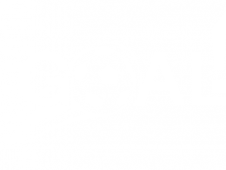 Autocolante Futebol Golo !